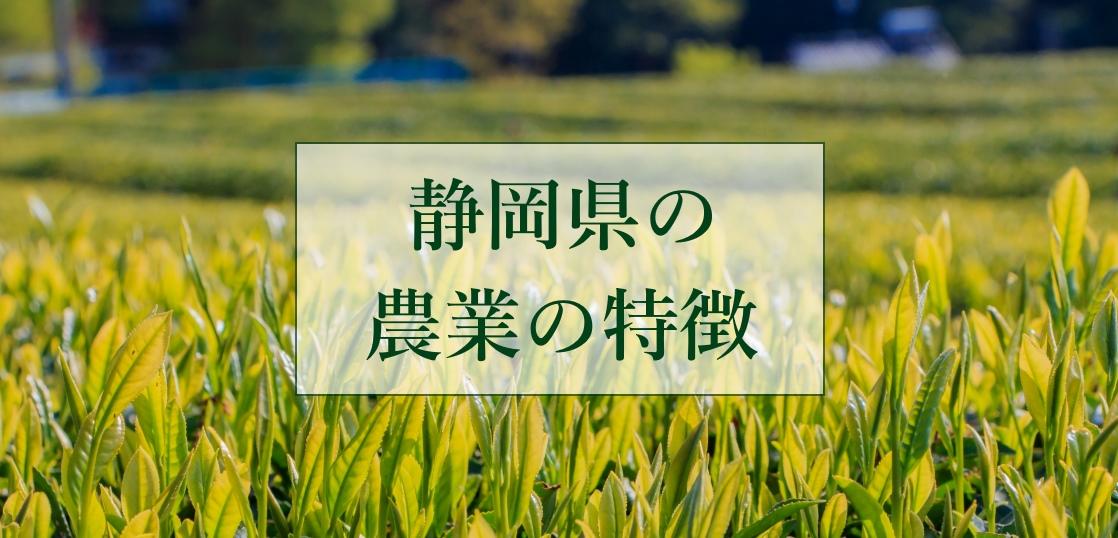 静岡県の農業の特徴