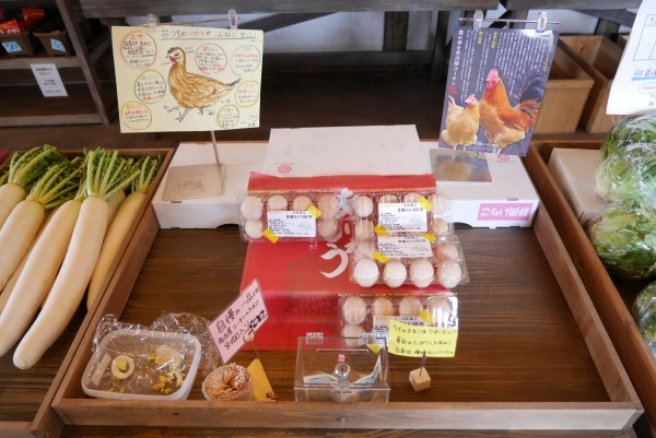 ネクストファーム 名古屋コーチンの卵
