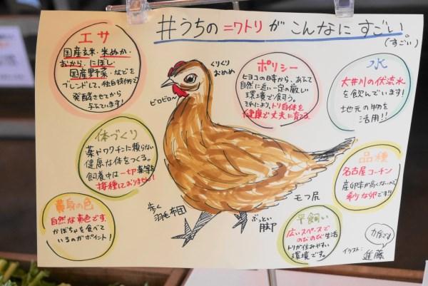 名古屋コーチンの卵 POP