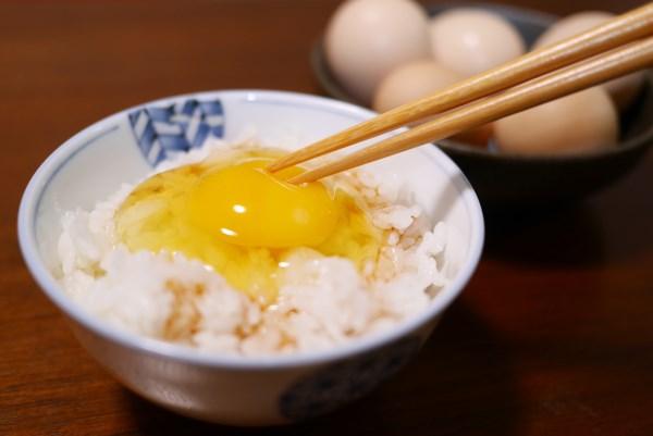 ネクストファーム 名古屋コーチンの卵 卵かけご飯