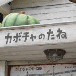 カボチャのたね(焼津市)―無人販売スタイルのおしゃれな直売所
