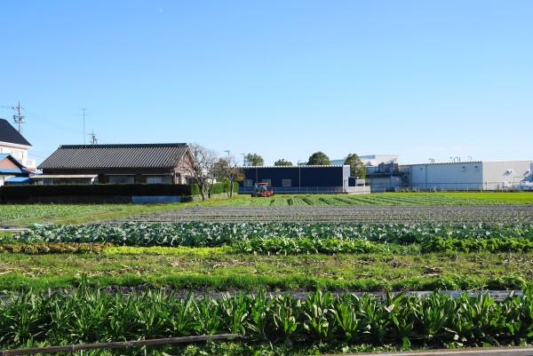 桑高農園(吉田町)